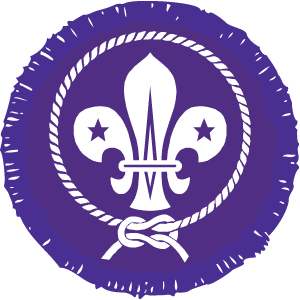 12th Penarth Scout Group
