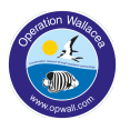 Operation Wallacea Indonesia 2020 - Eve Whitley