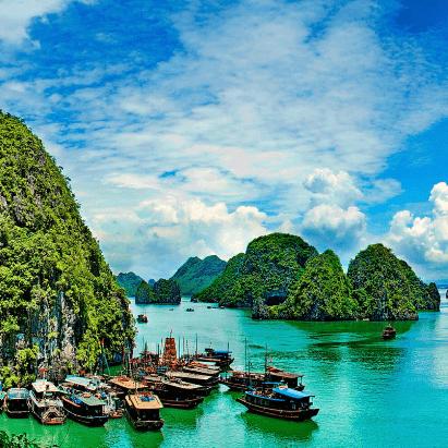 True Adventure Vietnam 2020- Amritha Murali