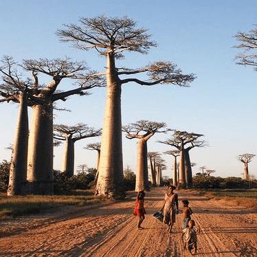 World Challenge Madagascar 2020 - Holly Zijderveld
