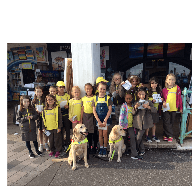 11th Hove Brownies