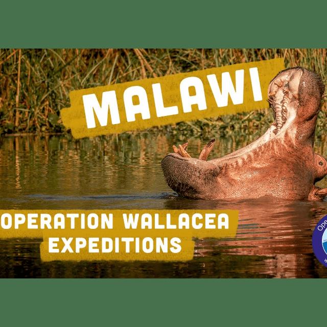 Operation Wallacea Malawi 2021 - Cameron Lambert