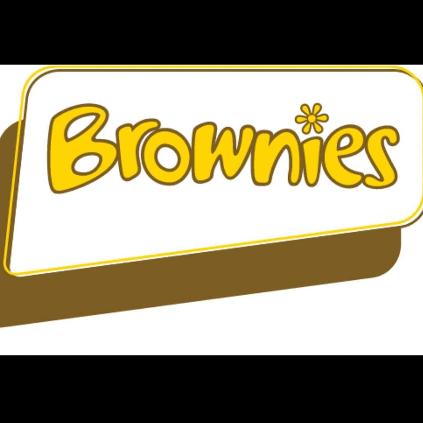 Girlguiding SWE - 3rd Bishops Cleeve Brownies