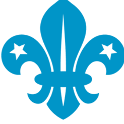 Wellington St Matthew's Beaver Scout Colony