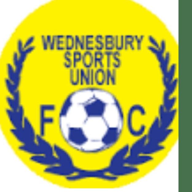 Wednesbury Sports Union U9's 19/20