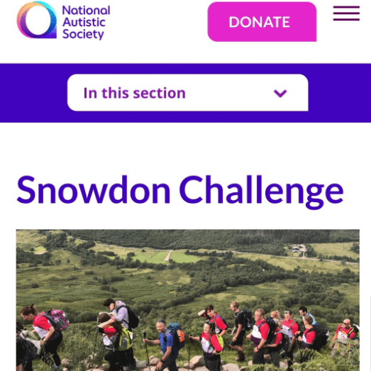 Snowdon 2019 in aid of National Autistic Society - Andrea Hickling