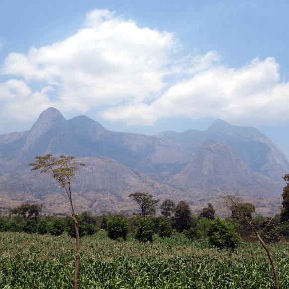 World Challenge Malawi - Archie Whitehead