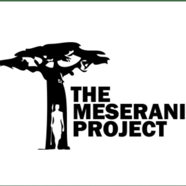 Meserani project Africa 2019 - Ellie Wheeldon