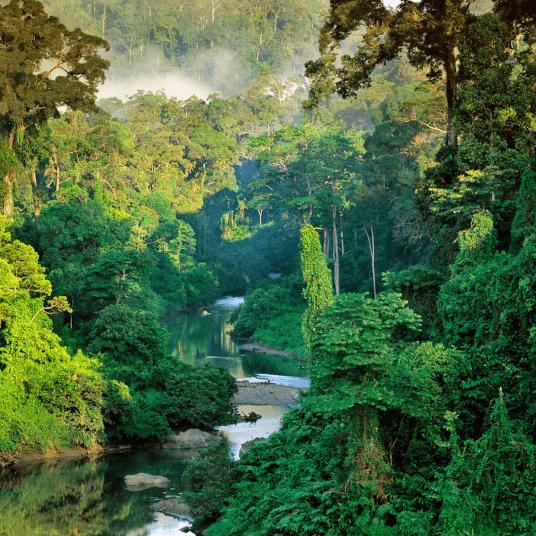 World Challenge Borneo 2022- Eve Kent