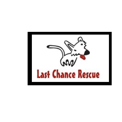 Last Chance Rescue - Hull
