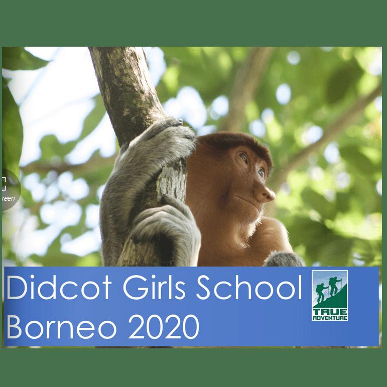 True Adventure Borneo 2020 - Sophie Thomason