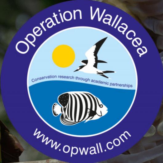 Operation Wallacea Croatia - Aidan Wickens