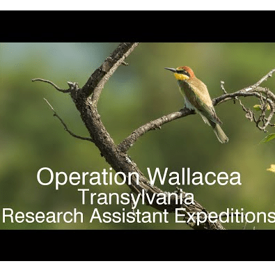 Operation Wallacea Croatia 2018 - Caspian Mansell