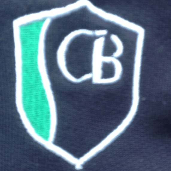 Friends of Coombe Bissett School