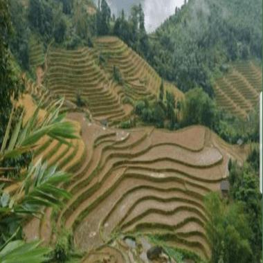 Vietnam 2021 - Luke Benfield