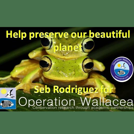 Operation Wallacea Borneo 2020 - Seb Rodriguez