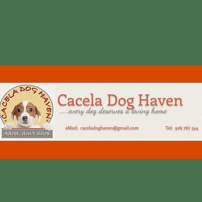 Cacela Dog Haven