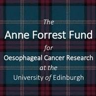 Anne Forrest Fund