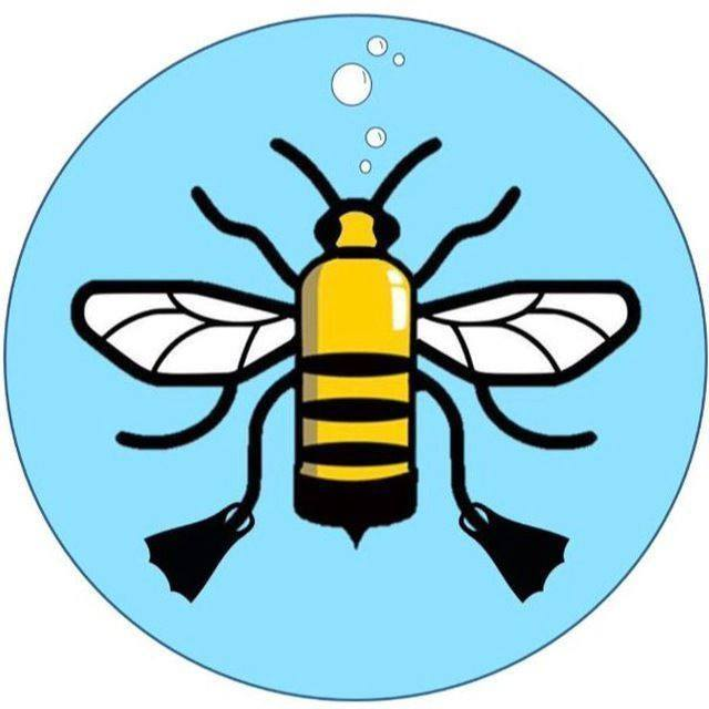 Manchester University Sub-Aqua Club
