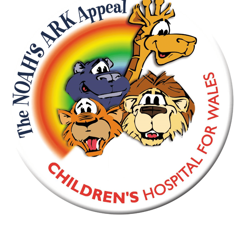 Millie and Ruby climb Pen Y Fan in aid of Noahs Ark Childrens Hospital of Wales - 2018