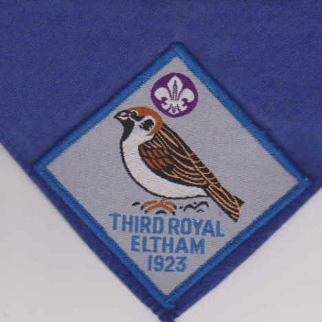 3rd Royal Eltham Scout Group
