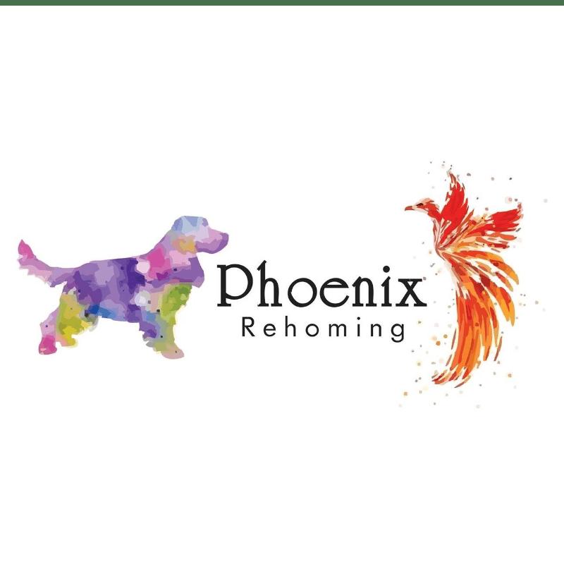 Phoenix Rehoming