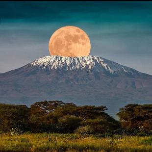 Dig Deep Climb Mount Kilimanjaro 2021 - Melissa Heywood