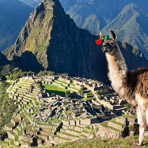 Camps International Peru 2020 - Lydia Netley