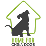 Home For China Dogs