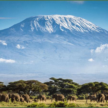 Lauren McCall - Kilimanjaro in aid of Mind 2019