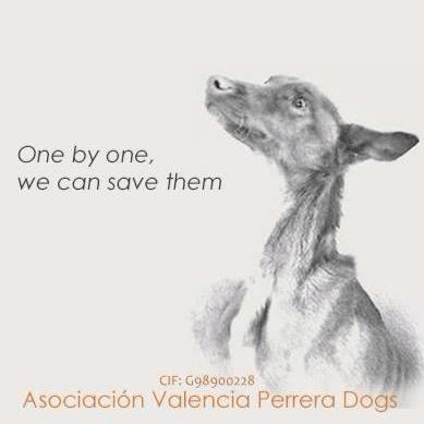 Asociación Valencia Perrera Dogs