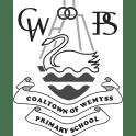 Coaltown Of Wemyss Primary School