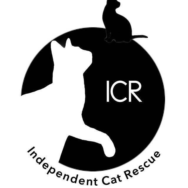 ICat (independent cat rescue)