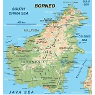 Camps International Borneo 2020 - Grace Elizabeth Smith