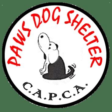 PAWS Dog Shelter -CAPCA - Paphos