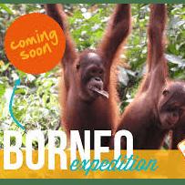 Camps International Borneo 2018 - Katie Billingham