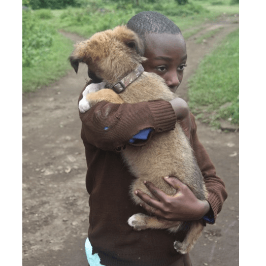 Mbwa Wa Africa (dogs of Africa) Animal Rescue