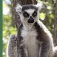 Outlook Expedition Madagascar 2019 - Debra Scott