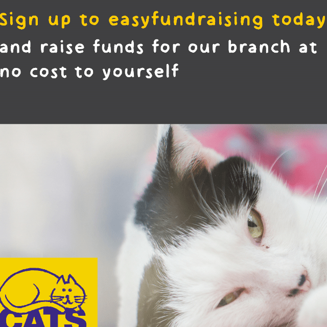 Cats Protection Teesside Branch