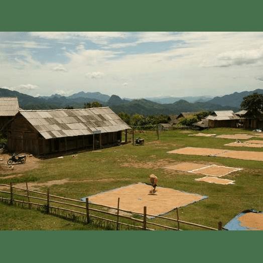 Better Lives Vietnam 2020 - Timothy Mitchell