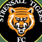 Strensall Tigers Under 11s FC