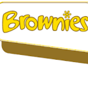 4th Princes Risborough Brownies