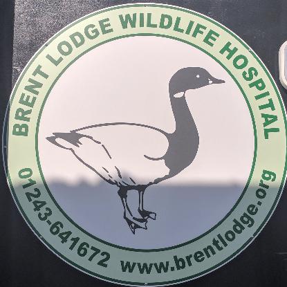 Brent lodge Wildlife Charity