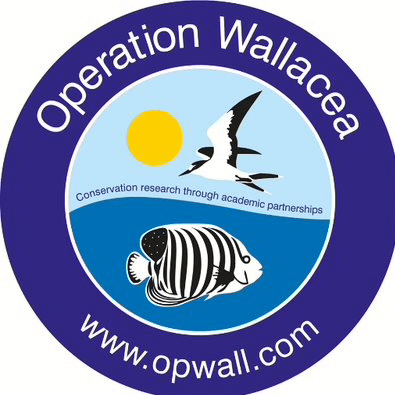 Operation Wallacea Indonesia 2021- Holly Forder