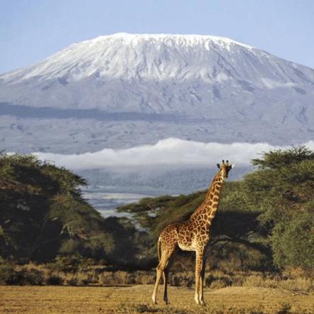 World Challenge Tanzania 2018 - Peter Angeli