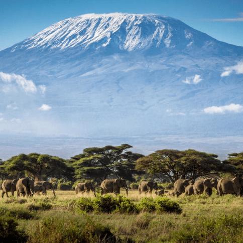 Childreach International Kilimanjaro 2018 - Scott McDonald