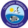 Operation Wallacea Honduras 2017 - Luke Hopkins