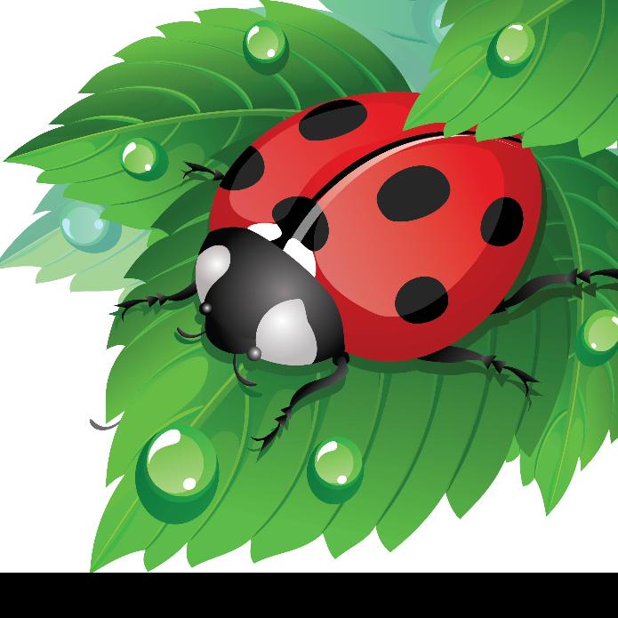 Ladybirds Pre School - Ticehurst