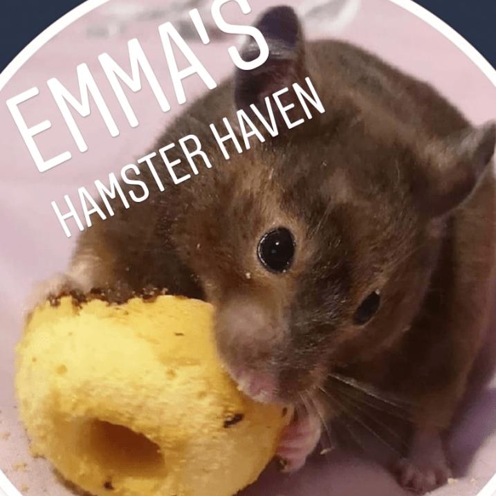Emma's Hamster Haven