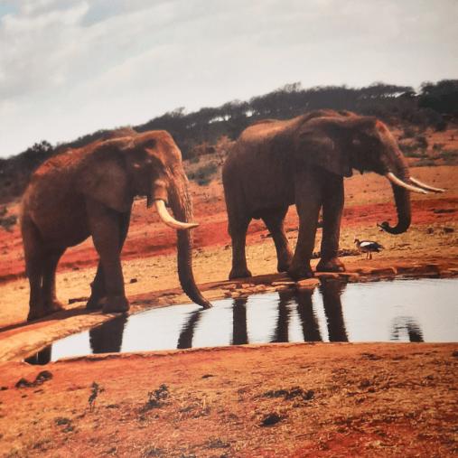 Kenya 2021 - George and Joseph
